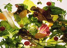 Vegetarianos devem sempre estar atentos a quantidade de vitamina B12 no organismo<br> Foto: Clipart